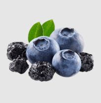 wholesale dried blueberries for sale